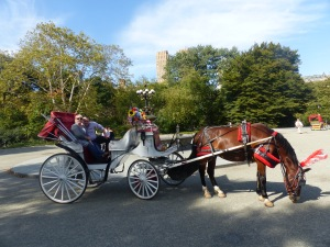 A horse drawn carriage - around Central Park