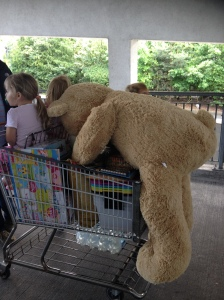 Teddy and trolley