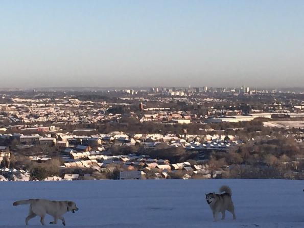 Snowy Birmingham skyline