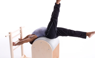 Pilates - ladder barrel